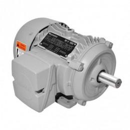 Motor Trifasico 2 Hp Baja Eficiencia Nema Premium Siemens Sie0014 SIE0014 SIEMENS