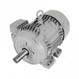Motor Trifasico 5 Hp Baja Eficiencia Nema Premium Siemens Sie0023 SIE0023 SIEMENS