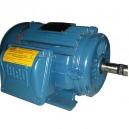 Motor Trifasico 2 Hp 2 Polos 12906475 WEG WEG0088 WEG0088 MOTORES WEG