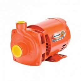 Motobomba Electrica Centrifuga Domestica 3/4 Hp Evans 2Hme075 V2HME075 EVANS