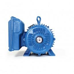 Motor Electrico Bifasico 10 Hp Baja Uso General Weg 14039235 WEG WEG0044-1 WEG0044-1 MOTORES WEG