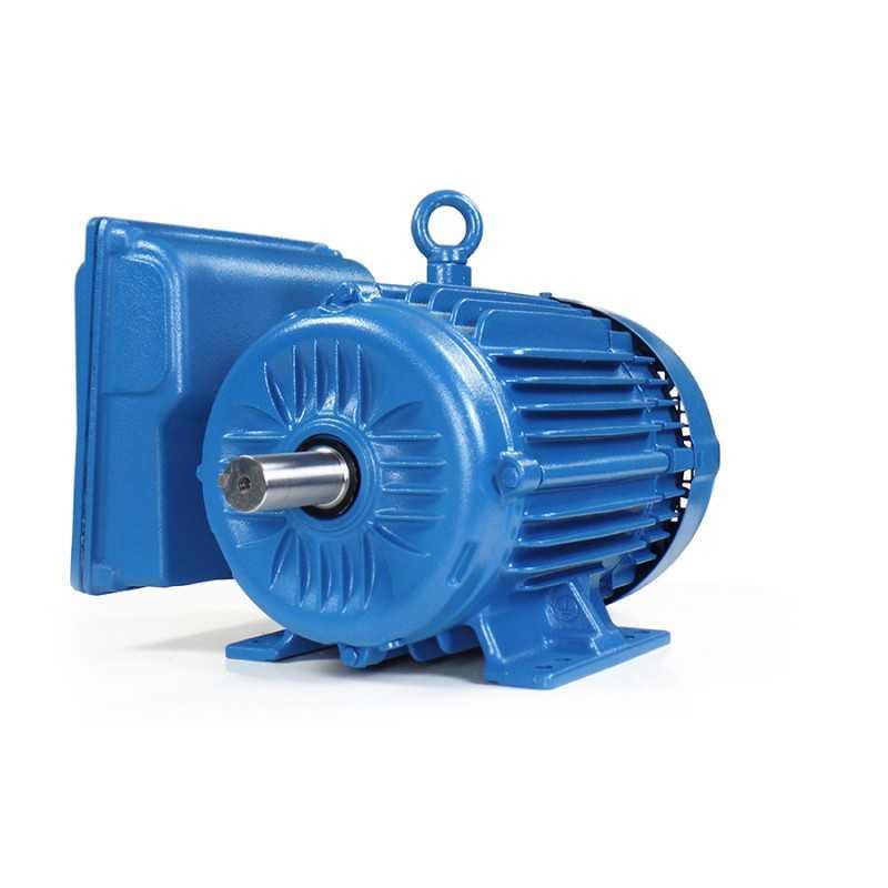 "Motor Electrico 7-1/2 HP Bifasico 4 Polos Brida ""C"" 14767956 WEG0050 MOTORES WEG"