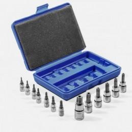 Puntas Torx Intercambiables 13 Piezas Stark Tools 33801 STK33801 STARK