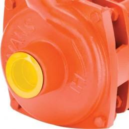 Motobomba Electrica Centrifuga Domestica 1/4 Hp Evans 1Hme025 V1HME025 EVANS
